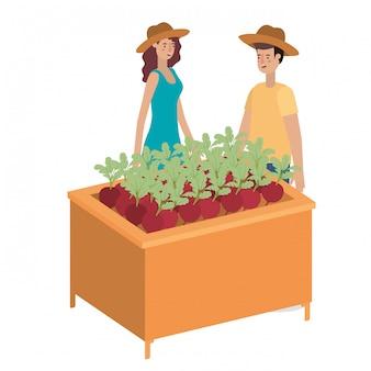 Couple sur une étagère en bois avec personnage avatar de légumes