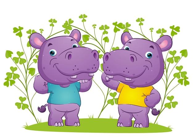 Le couple d'hippopotame fort fait du sport avec l'illustration de pose différente