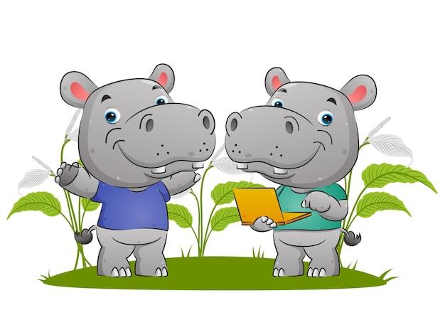 Le couple d'hippopotame mignon tient l'ordinateur portable et présente quelque chose d'illustration