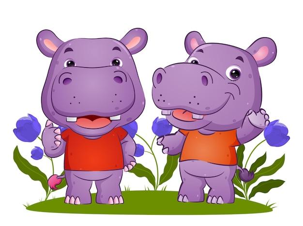 Le couple d'hippopotame parle ensemble et fait un geste d'illustration