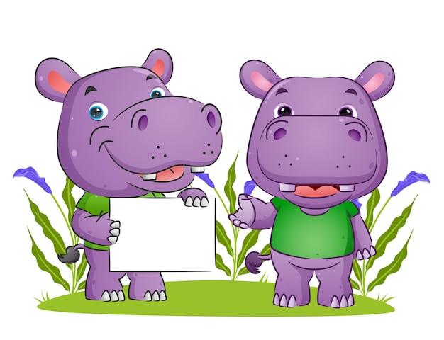Le couple d'hippopotame tient un tableau blanc et explique l'illustration du tableau