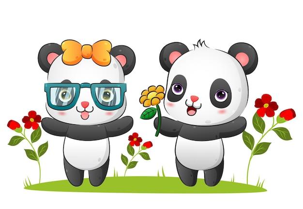 Le couple de panda heureux donne un tournesol à l'illustration d'un ami