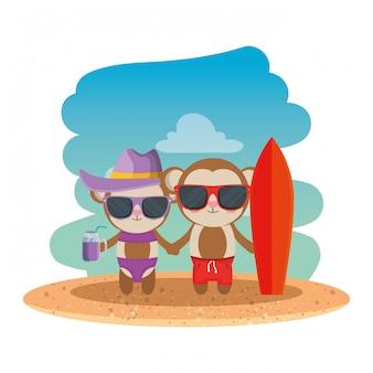 Couple de singes mignons avec cocktail et planche de surf sur la plage