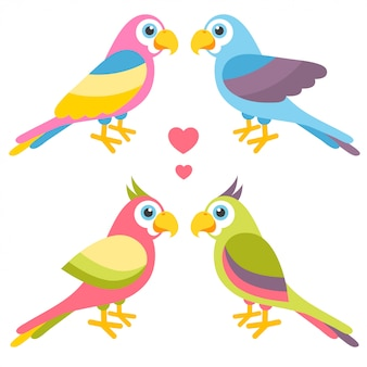 Couples de perroquets colorés de dessin animé amoureux