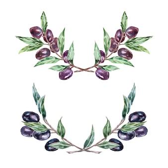 Couronne de branche d'olivier à l'aquarelle. cadre vectoriel naturel dessiné à la main.