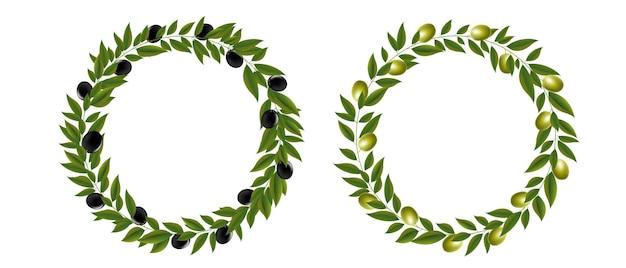 Couronne de deux olives isolé sur fond blanc avec filet de dégradé