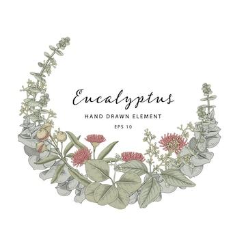 Couronne de plantes eucalyptus couronne de cadre de cercle
