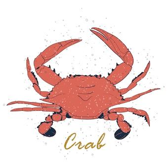 Crabe de corail isolé avec des pièges à air sur fond blanc.