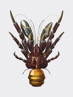 Crabe à la noix de coco (birgus latroi) illustré par charles dessalines et orbigny (1806-1876).