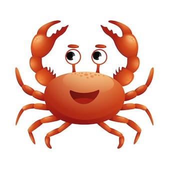 Crabe rouge de mer