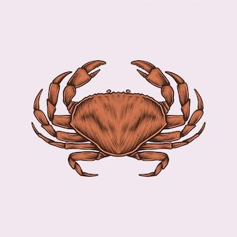 Crabe vintage dessiné à la main