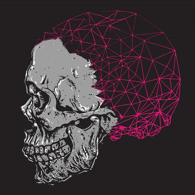 Crâne avec cerveau polygonal