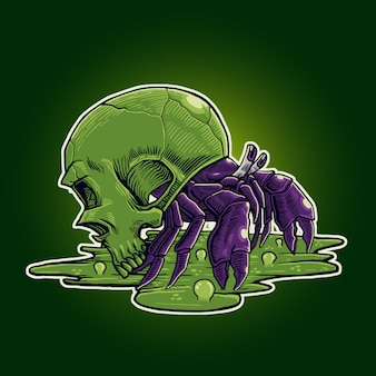 Crâne de crabe ermite