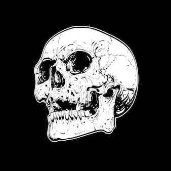 Crâne sur fond noir