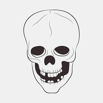 Crâne humain avec une mâchoire inférieure et des dents. illustration vectorielle dessinés à la main.