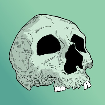 Crâne de mistick