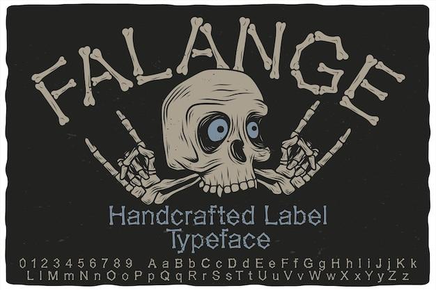 Crâne et police d'étiquette dessinés à la main