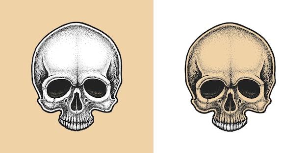 Crâne de style dotwork.