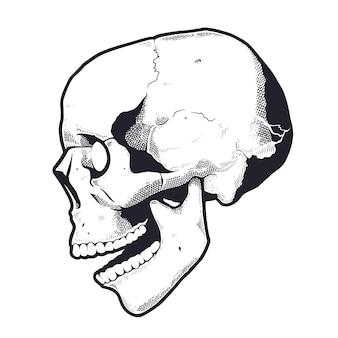 Crâne de style gravure avec bouche ouverte. noir et blanc