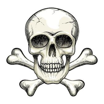 Crâne de vecteur et os croisés