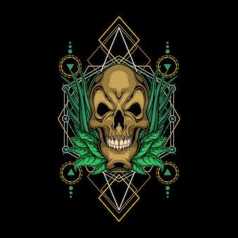 Crâne végétal géométrie sacrée