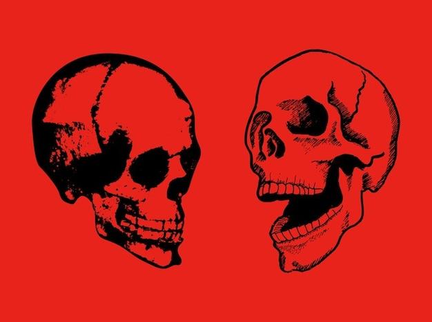Crânes heureux tête de mort de rire vecteur