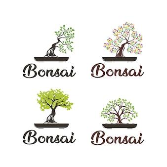 Création de logo bonsai
