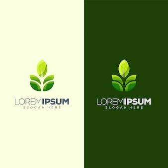 Création de logo feuille prête à l'emploi