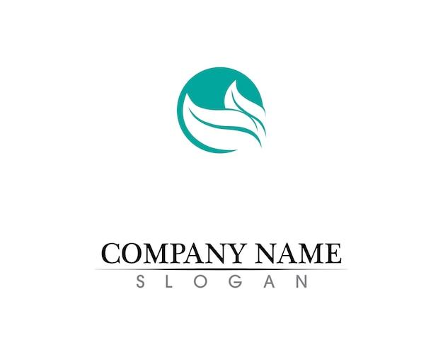 Création de logo vectoriel feuille d'arbre, concept écologique.