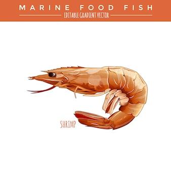 Crevettes cuites. marine food