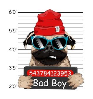 Criminel welsh bulldog avec chapeau rouge. photo d'arrestation. photo mugshot. plaque de police, cliché de la police. bulldog français