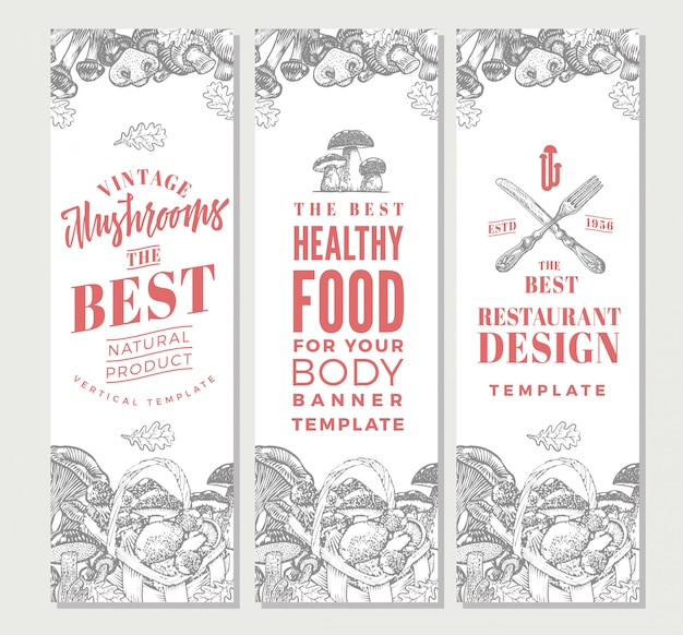 Croquis de bannières verticales d'aliments biologiques