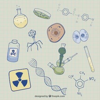 Croquis de biologie fond