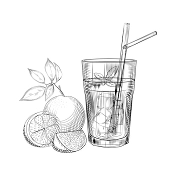 Croquis de cocktail aux fruits orange.