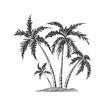 Croquis dessiné main de palmiers en monochrome