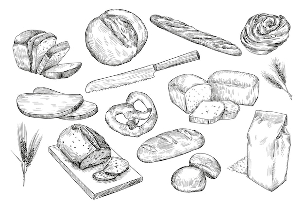 Croquis dessinés à la main de différents pains