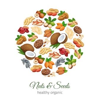Croquis dessinés à la main, noix et graines