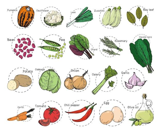 Croquis de différents légumes. autocollants de recette. ensemble de légumes isolé sur fond blanc.