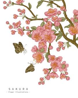 Croquis ensemble décoratif floral. dessins de fleurs de cerisier en fleurs. dessin au trait vintage isolé. illustrations botaniques dessinées à la main.
