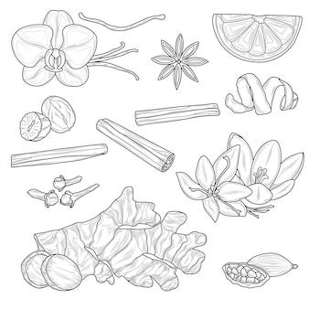 Croquis d'épices pour la cuisson. livre de coloriage antistress pour enfants et adultes. style zen-tangle. dessin noir et blanc