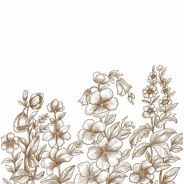 Croquis floral décoratif