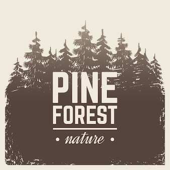 Croquis forêt de pins et de sapins nature vintage dans le brouillard