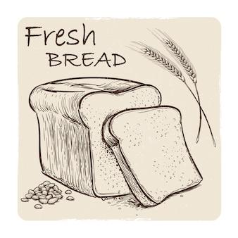Croquis grunge de pain frais, grains et épis de blé