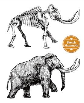 Croquis mammouth dessiné à la main