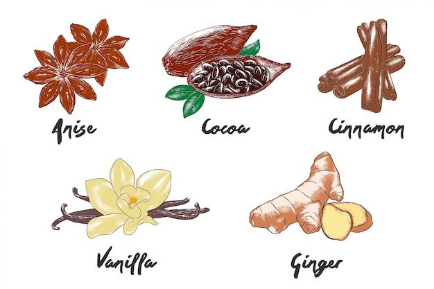 Croquis de nourriture colorée dessinés à la main