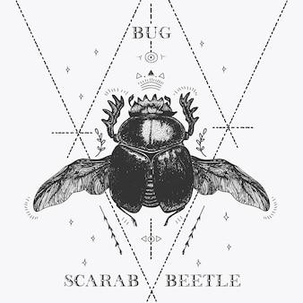 Croquis scarabée magique scarabée