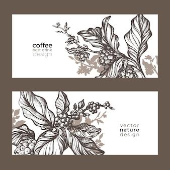 Croquis de vecteur d'emballage de café nature modèle organique réaliste avec des feuilles de haricot fleur