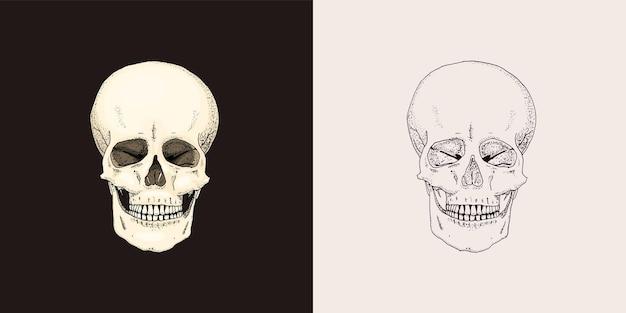 Croquis de la vieille école rétro de crâne humain pour le tatouage dans le symbole monochrome de style vintage dessiné à la main