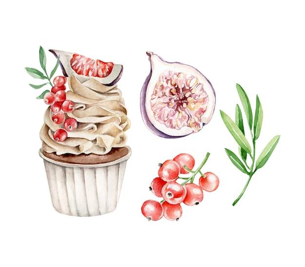 Cupcake aquarelle avec groseille rouge et figue