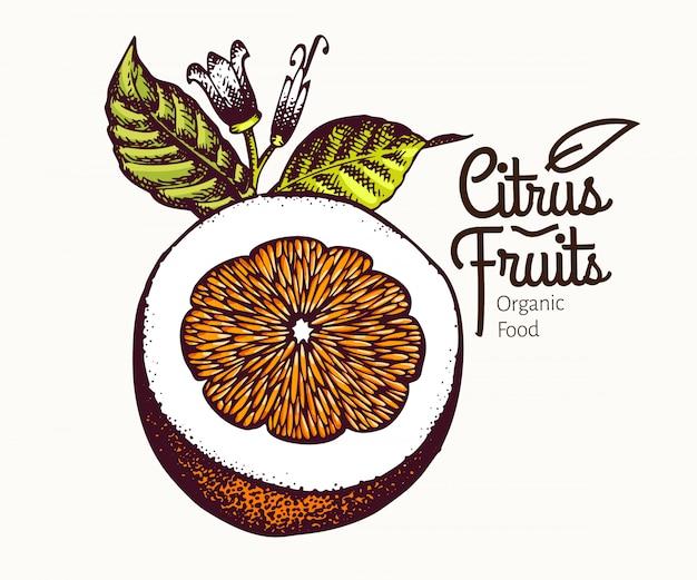 Cur orange